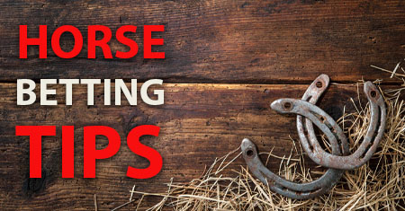 Horse Betting Tips Canada